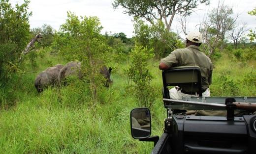 rhino + jeep