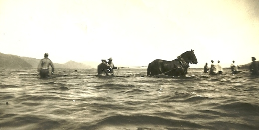Horse seining on the Columbia River (from my mother's collection)