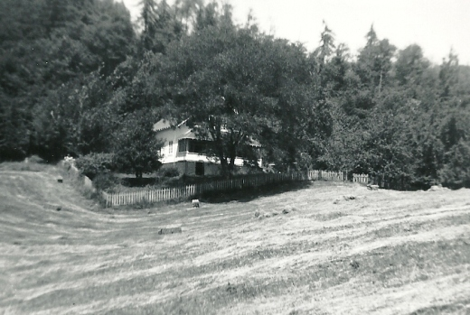 My mother's house, photo taken in 1967 just after the hay was baled.