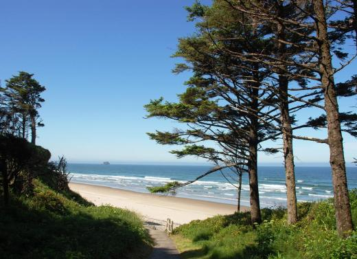 The trail down to Hug Point beach, Oregon.