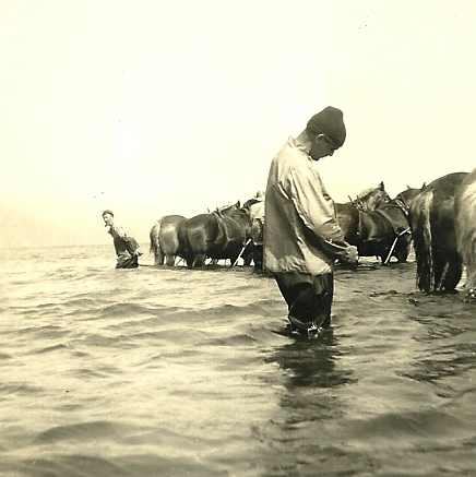 A fisherman standing behind the horses (from my mother's collection)