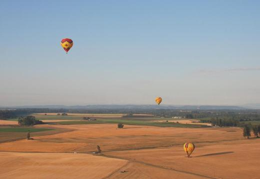 Three of the balloons near the open field landing site.