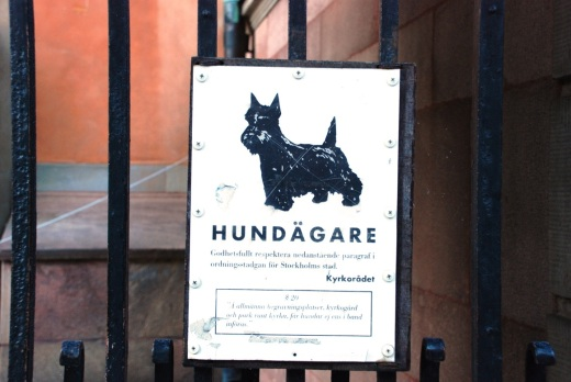 This sign on a gate in Gamla Stan warns people to be mindful of the laws on dogs in church, one of the few places dogs do not seem to be allowed.