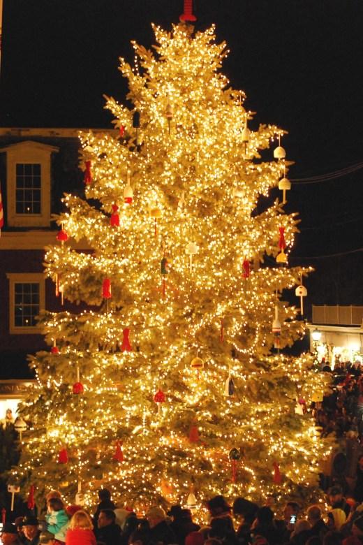 The 2013 Christmas Prelude Christmas Tree