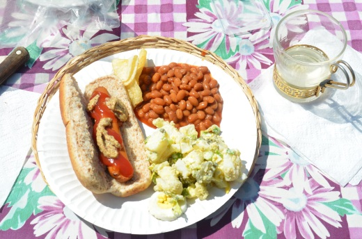 """Smart Dog"" soy hot dog, potato salad, and vegetarian baked beans.  Yum."