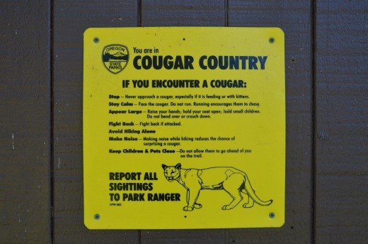 A Cougar warning sign at Ecola State Park