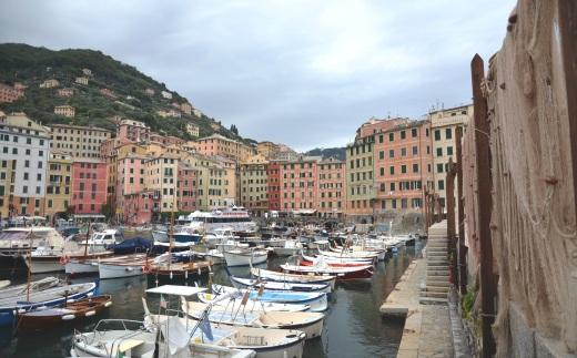 The Port of Camogli