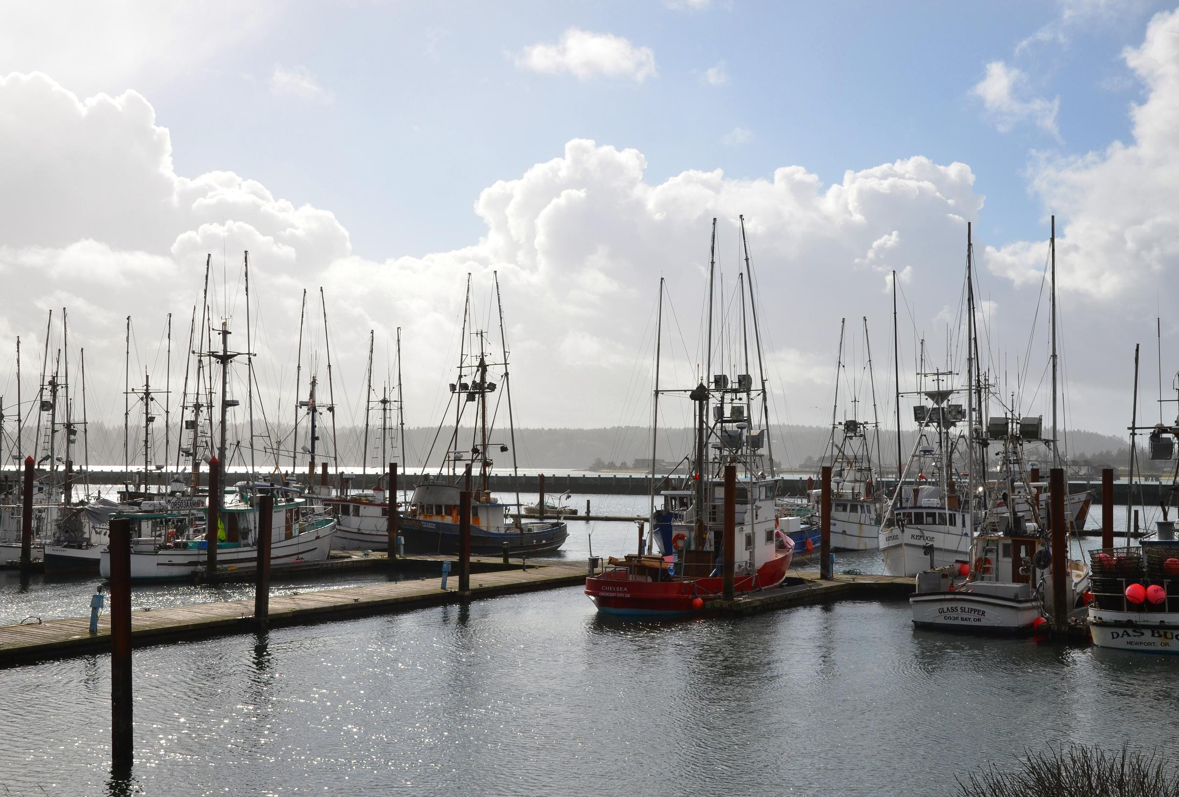 Mid october on the central oregon coast a traveler 39 s for Newport oregon fishing