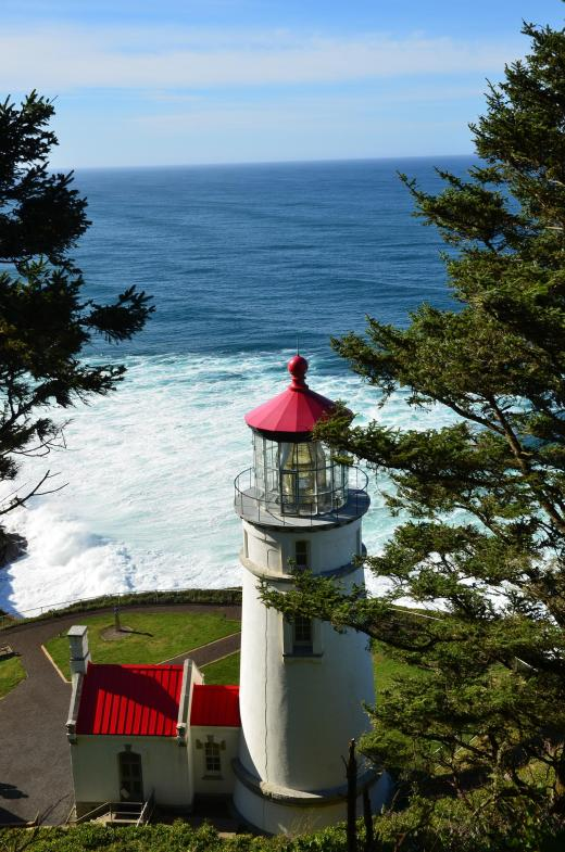 The Heceta Lighthouse taken from a trail behind the structure