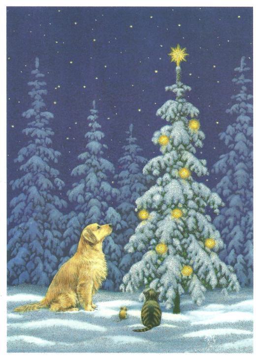 2013 christmas card 001