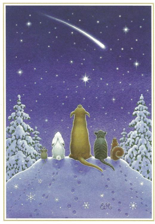 2013 christmas card 002