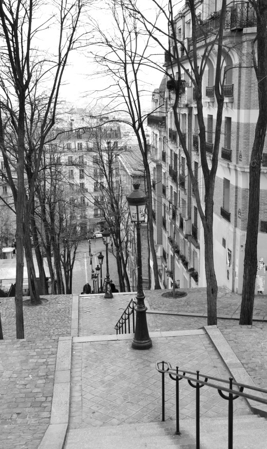 Montmartre stairs, looking down, black and white