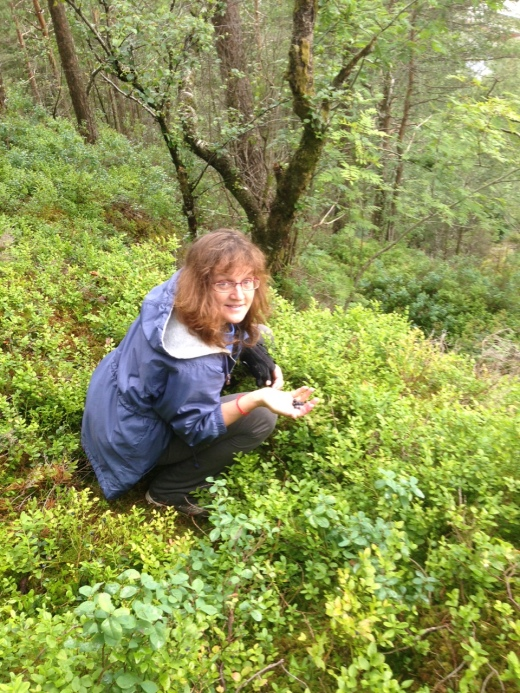 My sister picking wild blueberries