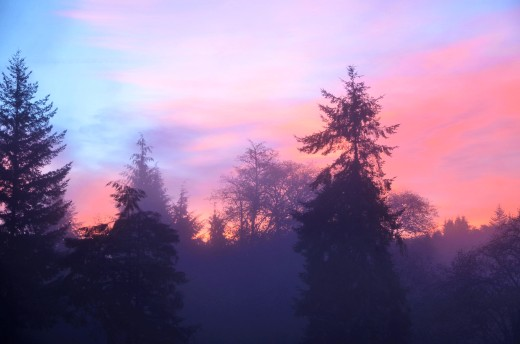 Oregon sunrise