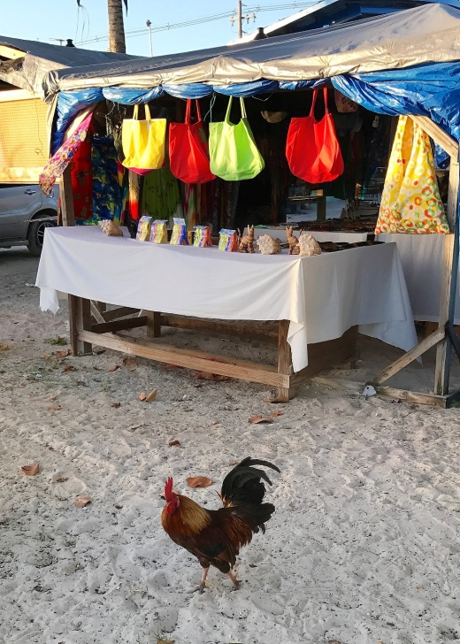 A rooster among the stalls