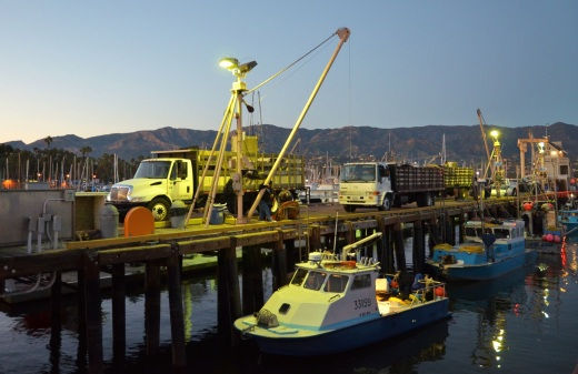 sea-urchin-boat