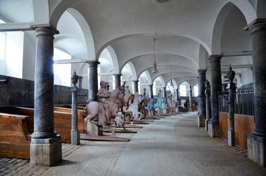 horses exhibit